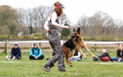 Hundsportelever på Skol-SM i Ronneby!