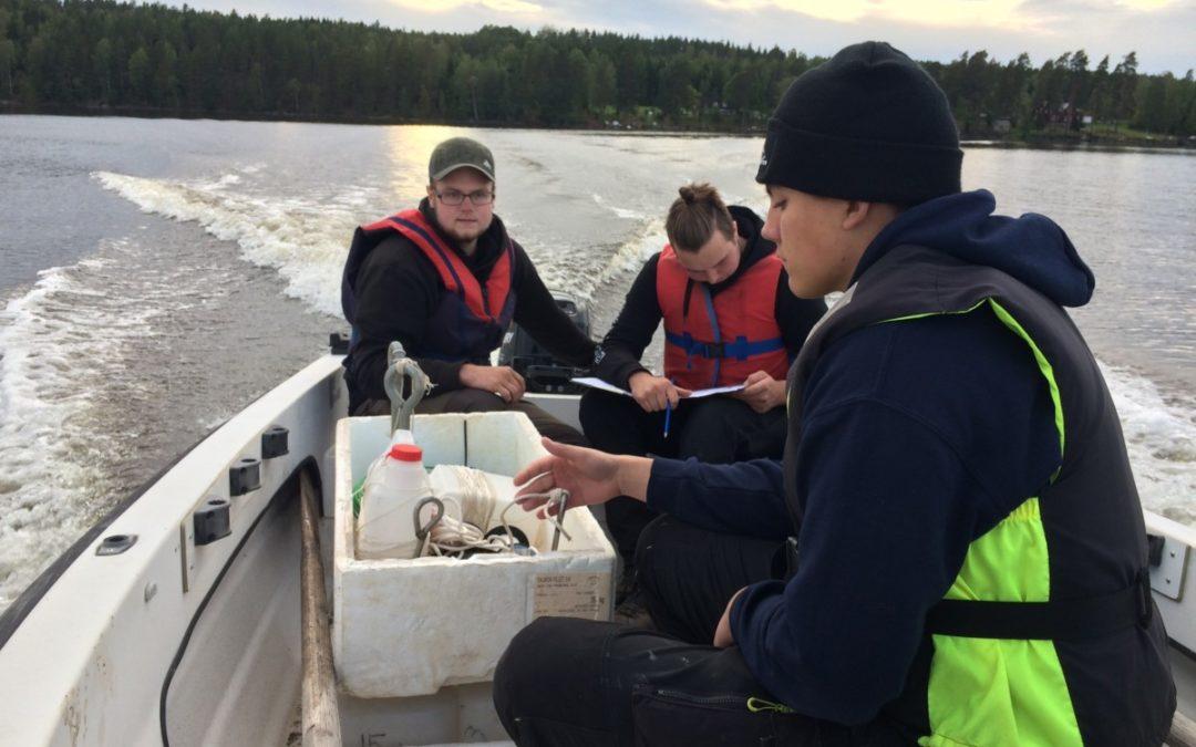 Nätprovfiske i Molkomsjön