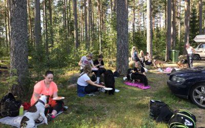 Skogsdag med Hundsport åk 1