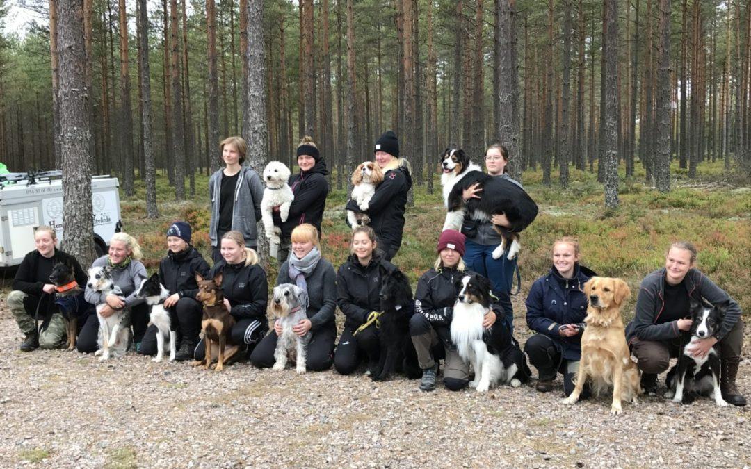 Hundsportare testade på militärliv