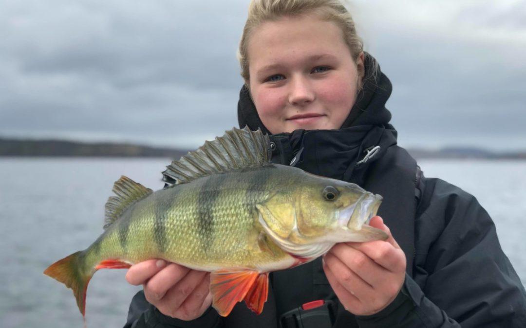 Höstfiskeveckan för Fiske 1