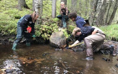 Biotopvård – Sportfiskeakademins elever har lektionssalen i fält
